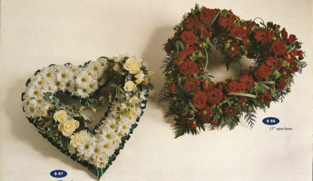 Forget Me Not - Brighton Florist Shop
